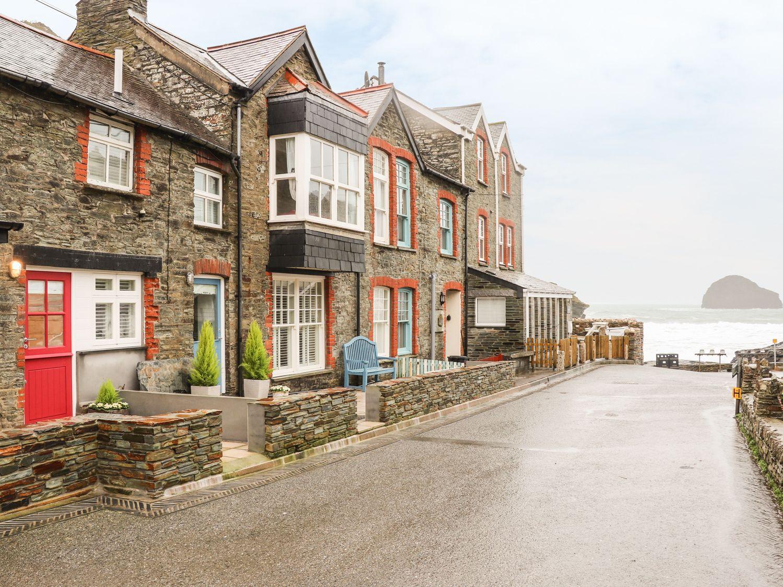 Salty Sea Dog, Tintagel, Cornwall