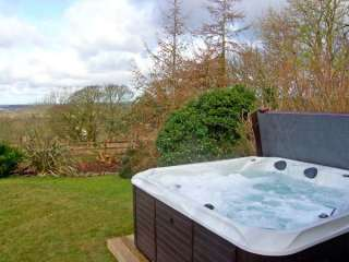Bryn Coed Cottage photo 1