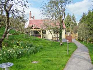 Photo of Orchard Cottage