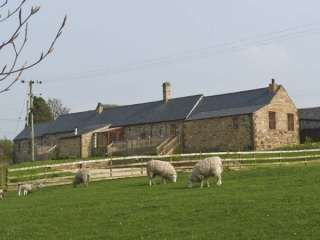 The Stable photo 1