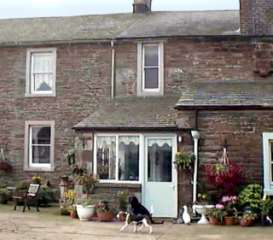 Foxgloves Cottage photo 1