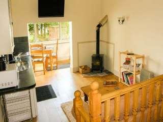 Gwynfryn Cottage photo 1