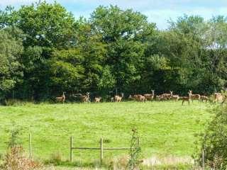 Deer Farm Cottage photo 1