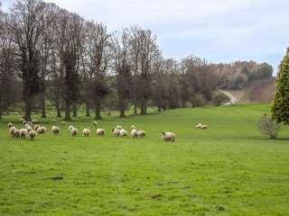 Walcot Farm photo 1