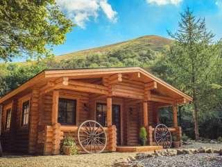 Wilderness Lodge photo 1