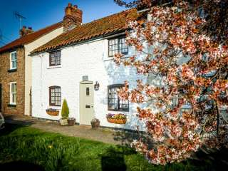 Clara's Cottage photo 1