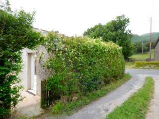 Hickory Cottage photo 1