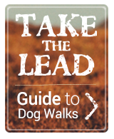 Click here to visit our guide of great Dog Walks in the UK