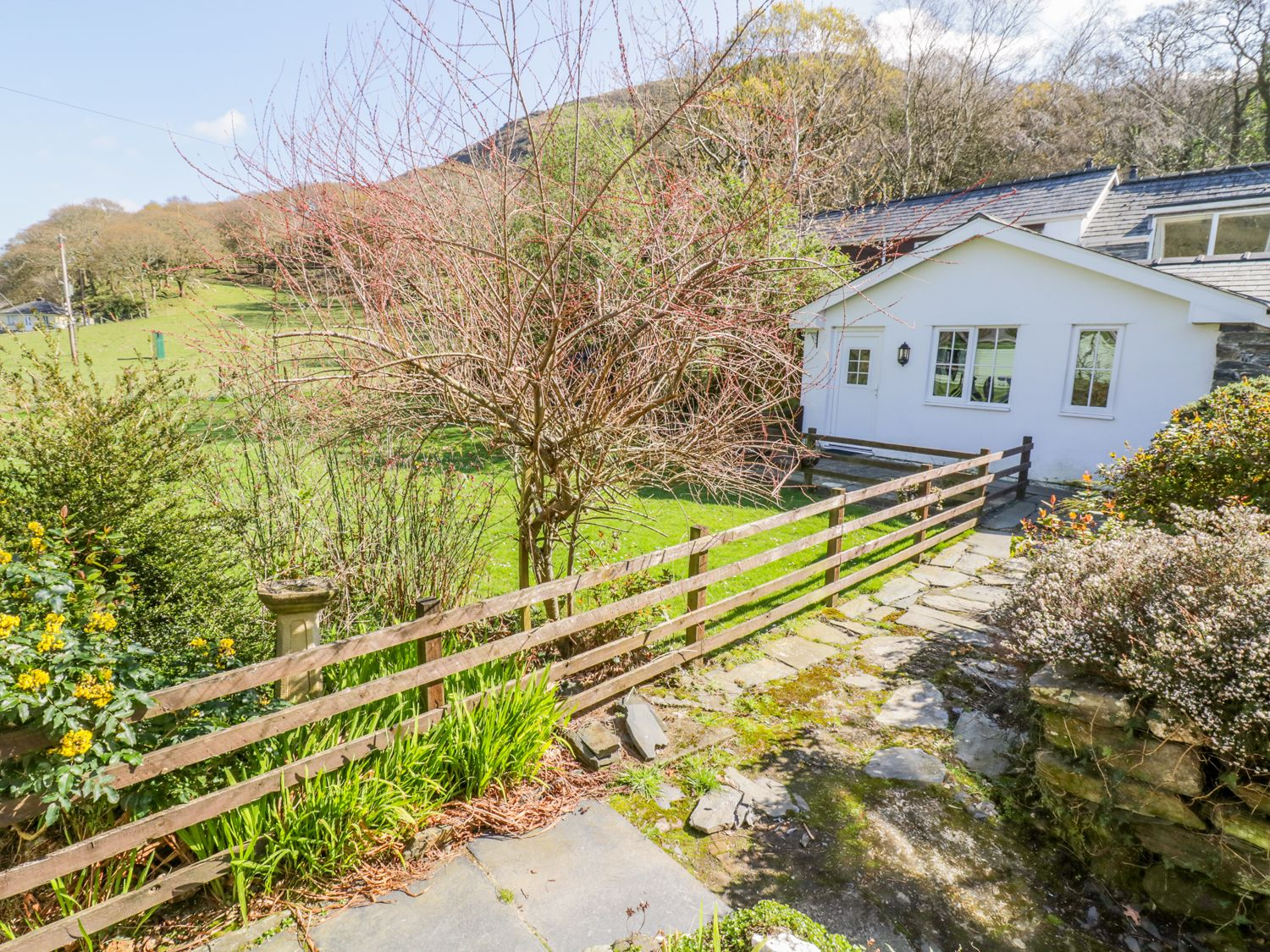 Dolgoch Falls Cottage - Mid Wales - 1000862 - photo 1