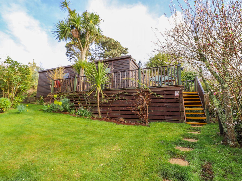 Palm Lodge - Cornwall - 1003556 - photo 1