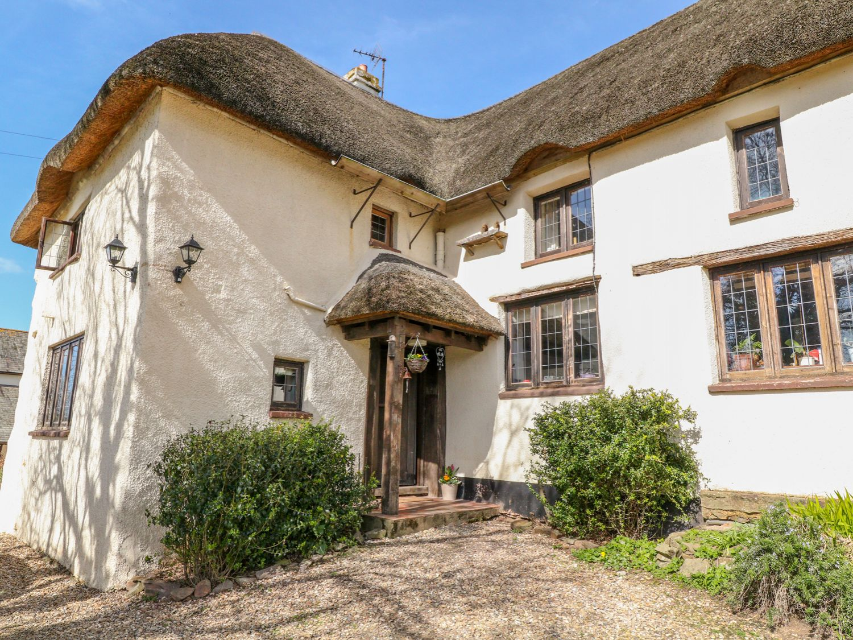 Wigham Cottage - Devon - 1004361 - photo 1