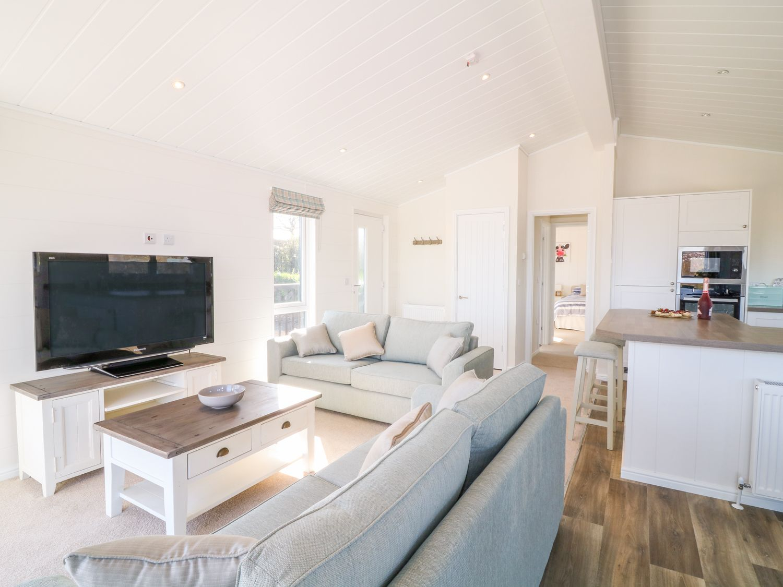 Beech Lodge - Devon - 1008070 - photo 1
