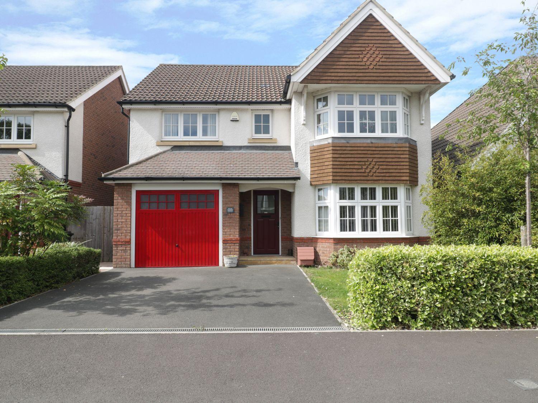 House Martins - Somerset & Wiltshire - 1008276 - photo 1