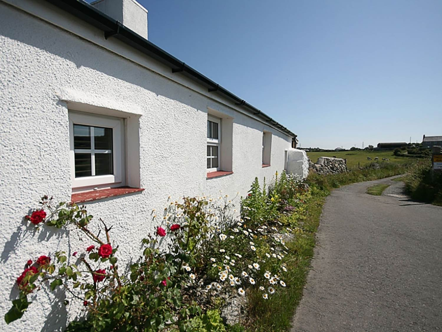 Farm Cottage - Anglesey - 1008823 - photo 1