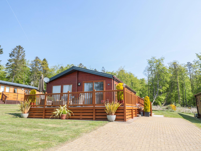 Cedar Lodge - Northumberland - 1011139 - photo 1