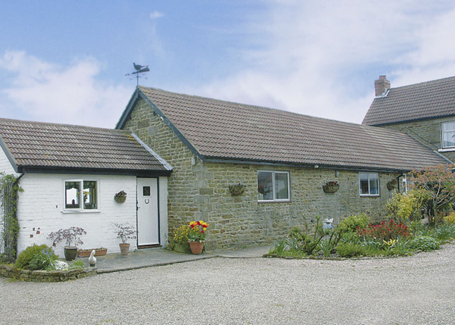 Hermitage Cottage - Whitby & North Yorkshire - 1109 - photo 1