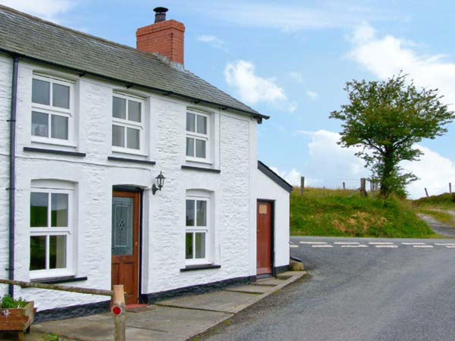 Plynlimon View - Mid Wales - 12335 - photo 1