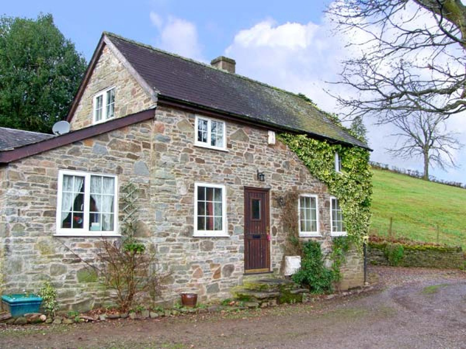 Wern Tanglas Cottage - Shropshire - 12897 - photo 1
