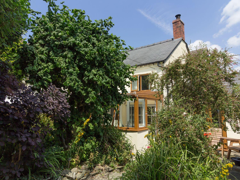 Jessamine Cottage - Shropshire - 1673 - photo 1
