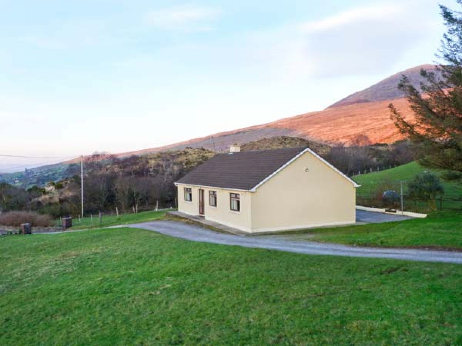 Lyreboy - County Kerry - 23463 - photo 1