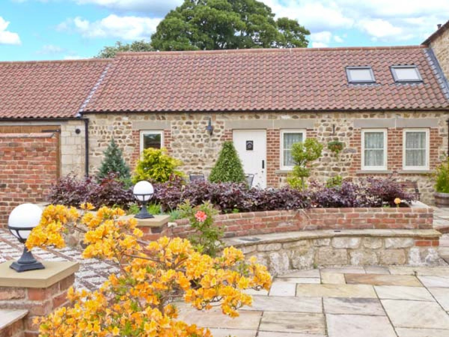 Markington Grange Cottage - Yorkshire Dales - 2356 - photo 1