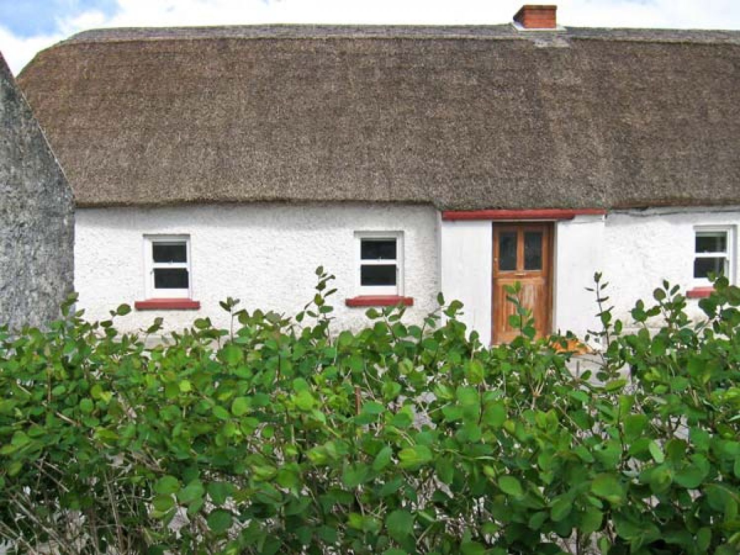 Callan Thatched Cottage - East Ireland - 23788 - photo 1