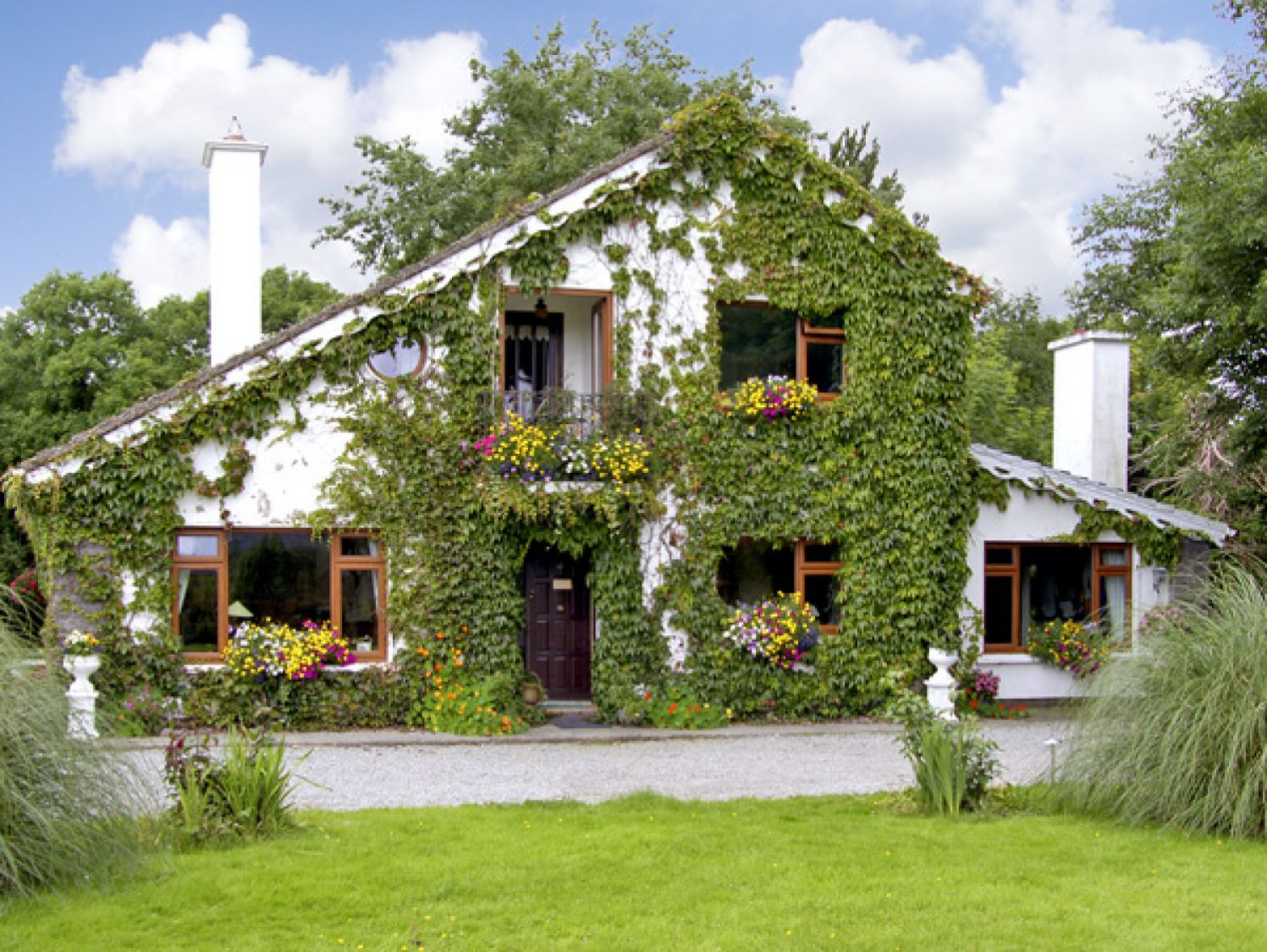 Brewsterfield Lodge Cottage - County Kerry - 2629 - photo 1