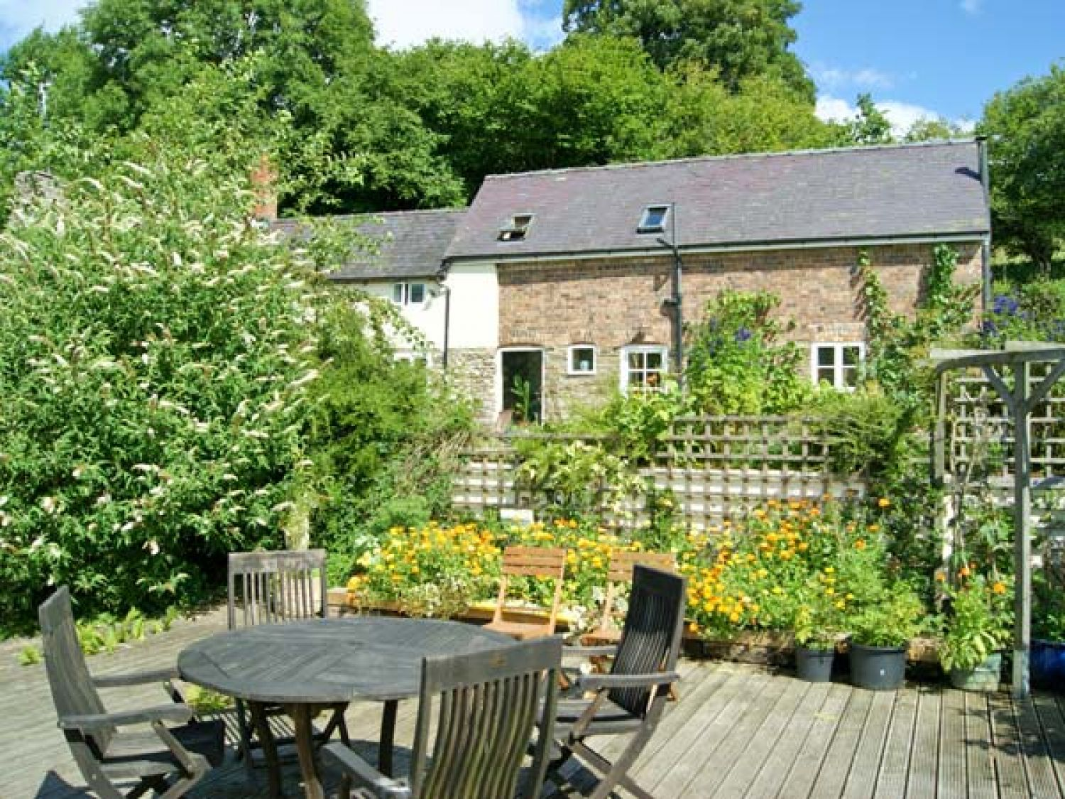 King Grove Cottage - Shropshire - 28737 - photo 1
