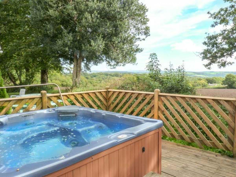 3 Dartmoor Lodge - Cornwall - 4544 - photo 1