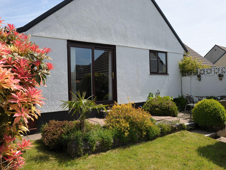 Peewit - Cornwall - 7406 - photo 1