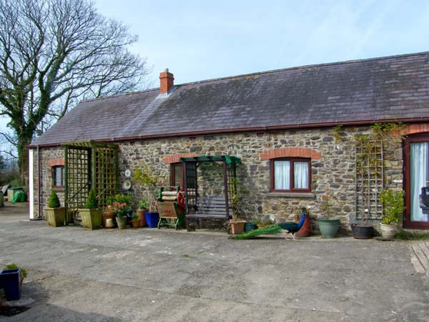 Molly's Cottage - South Wales - 8199 - photo 1