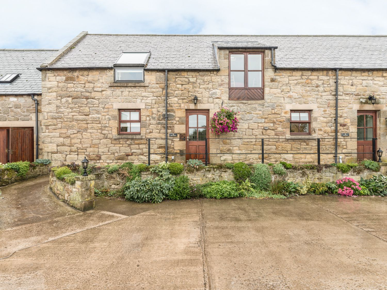 Jenny's Cottage - Northumberland - 820 - photo 1