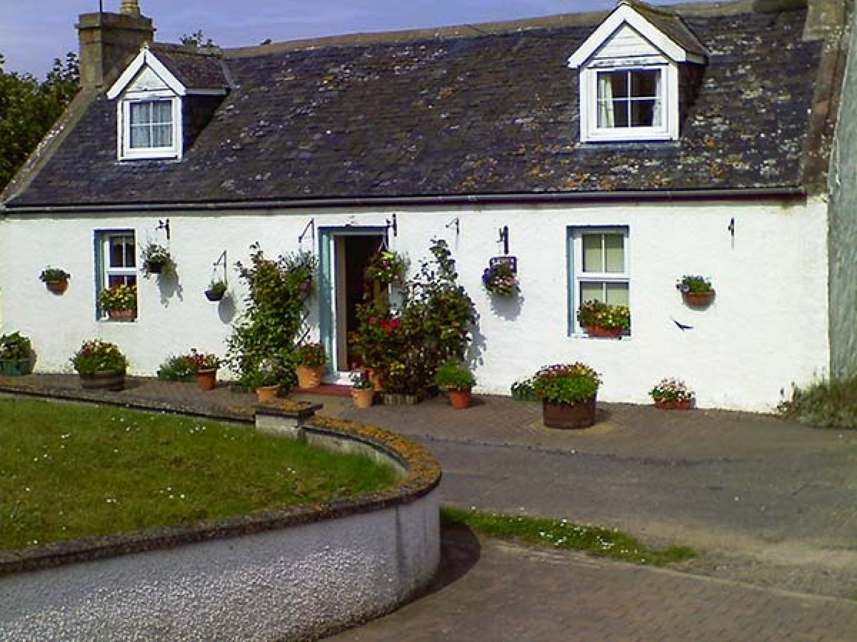 Bluebell Cottage - Scottish Highlands - 906616 - photo 1