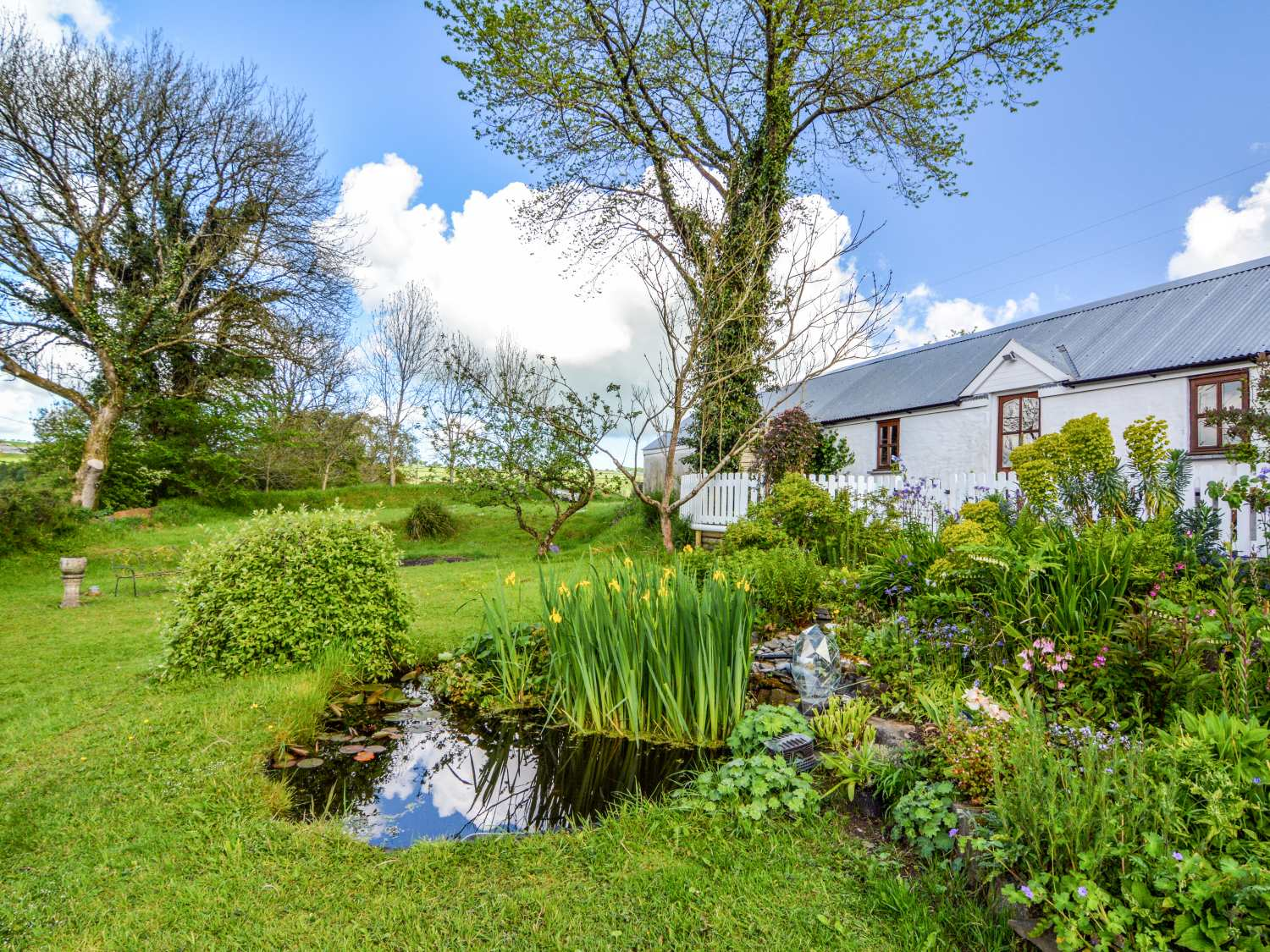 Pandy Cottage - Mid Wales - 916110 - photo 1