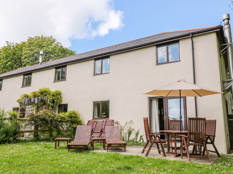 Corky's Cottage - Cornwall - 916241 - photo 1