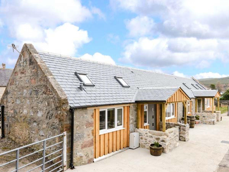 1 Wee-Kalf - Scottish Lowlands - 918273 - photo 1
