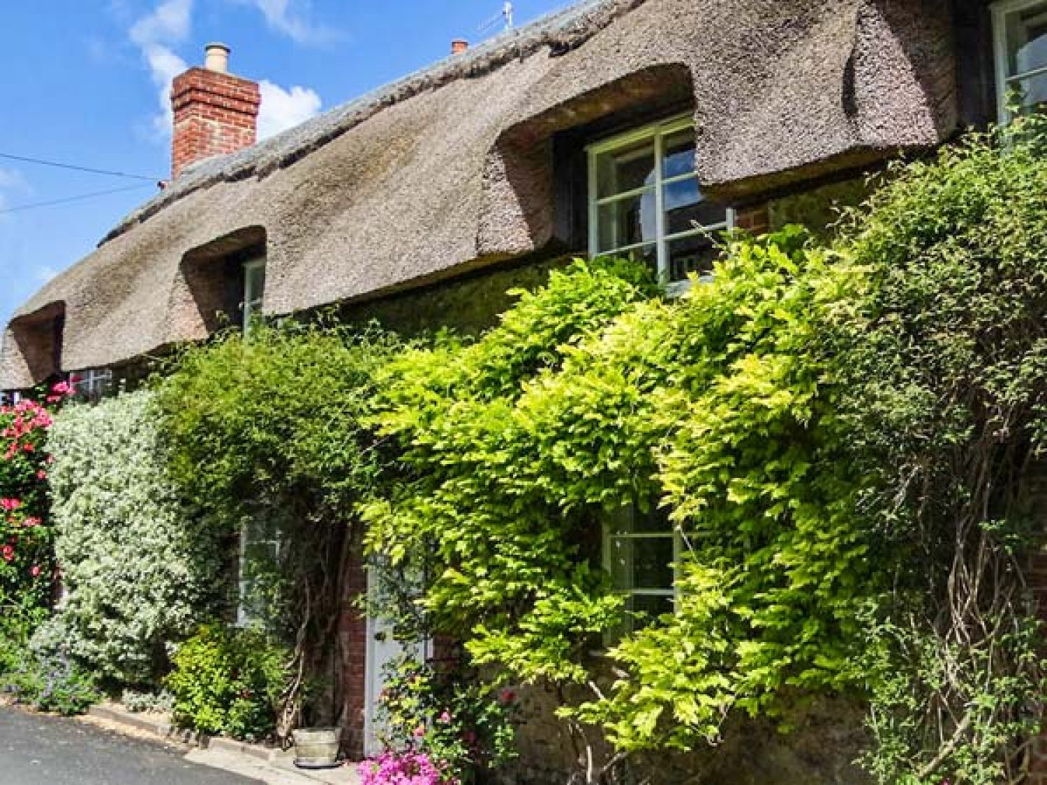 Little Thatch - Dorset - 919506 - photo 1