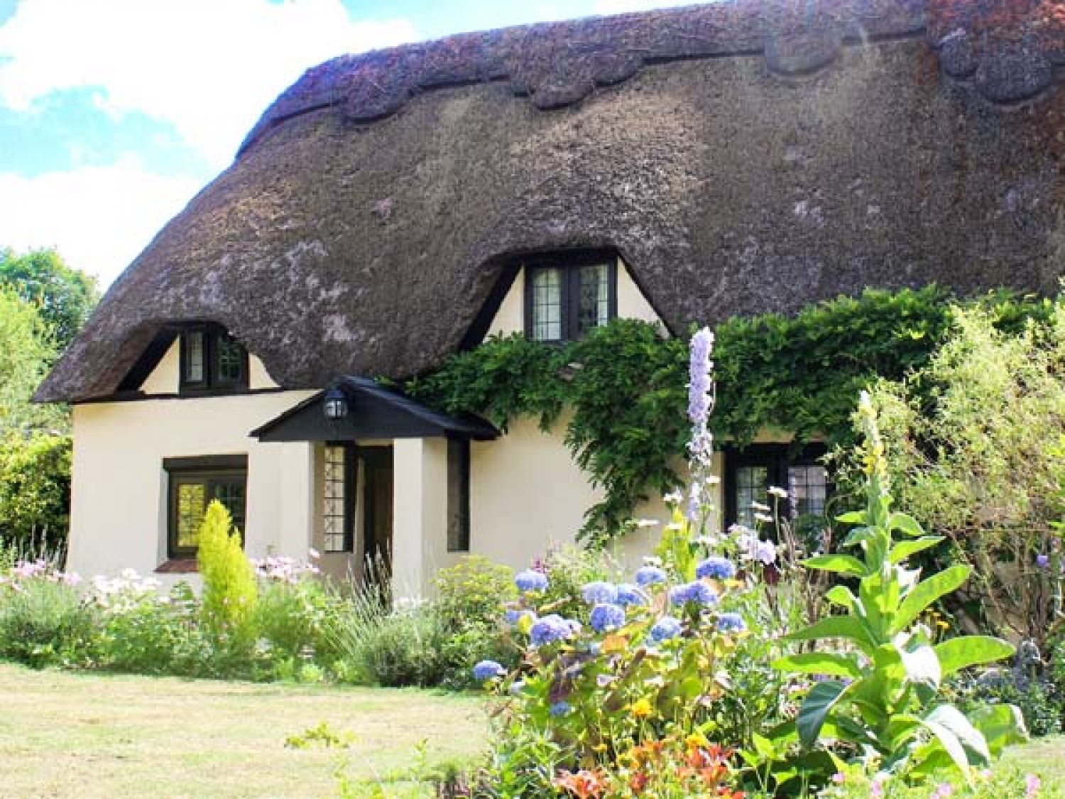 Longhouse Cottage - Dorset - 920454 - photo 1