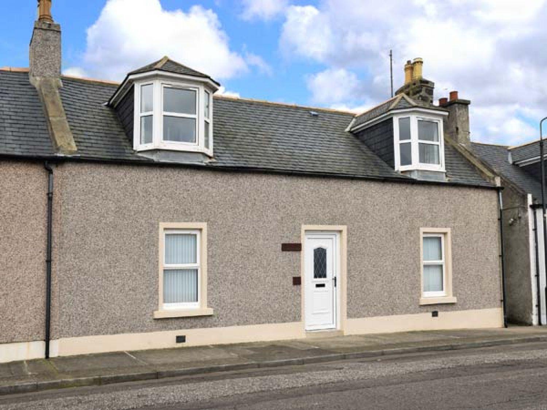 Hazledene Cottage - Scottish Lowlands - 924596 - photo 1