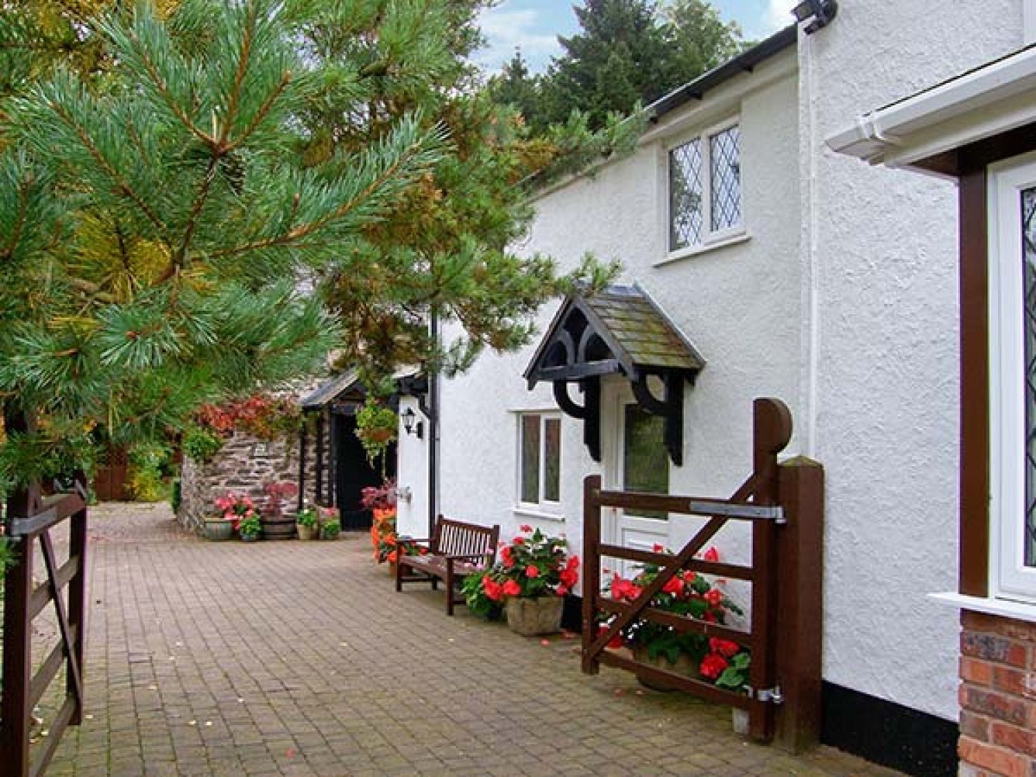The Little White Cottage - North Wales - 926008 - photo 1