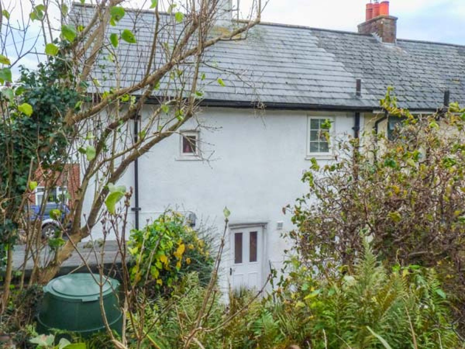 Cornflower Cottage - Devon - 927672 - photo 1