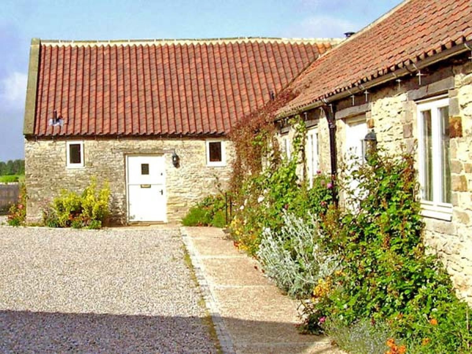 Pheasant Cottage - Whitby & North Yorkshire - 929317 - photo 1