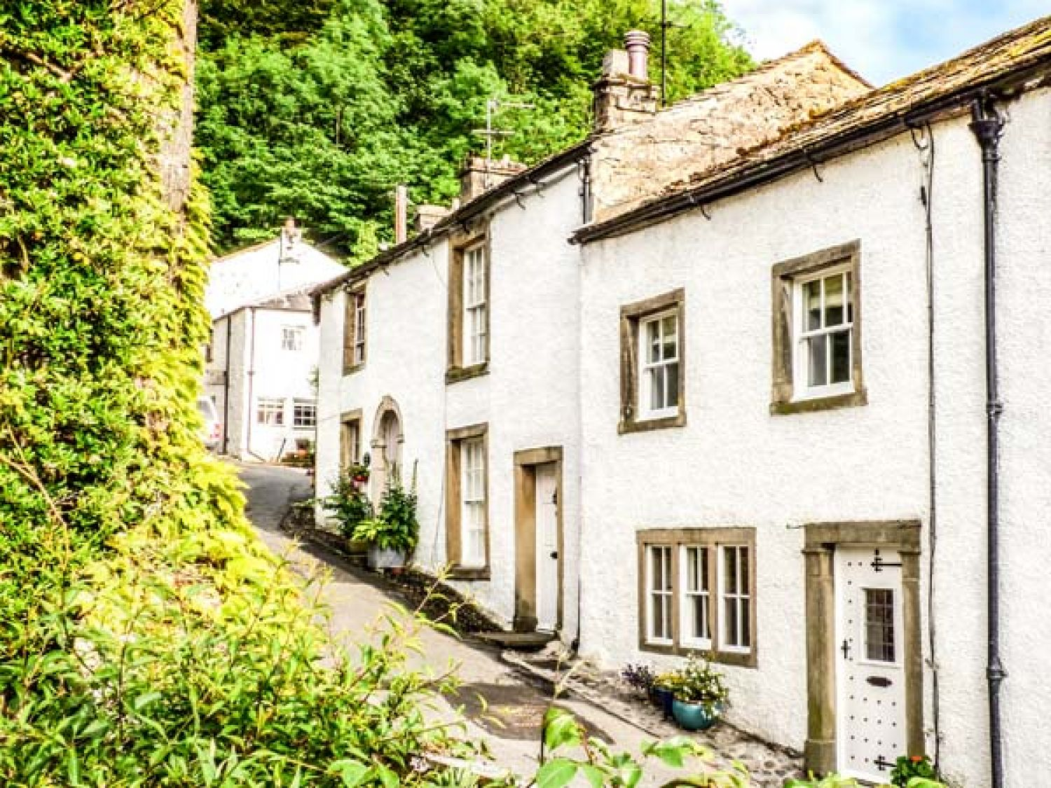 Ivy Cottage - Yorkshire Dales - 930910 - photo 1
