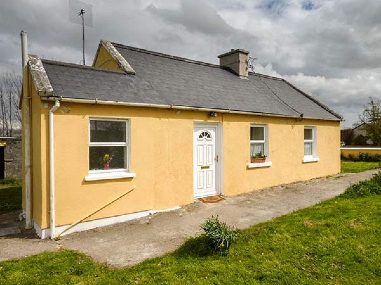 Adare Field Cottage - 933140 - photo 1