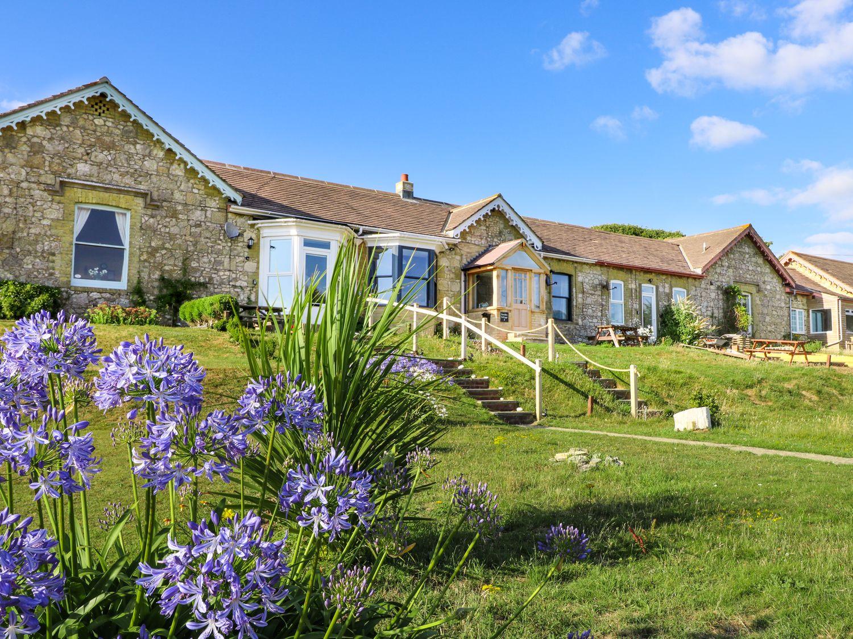 Needles Cottage - Isle of Wight & Hampshire - 942245 - photo 1