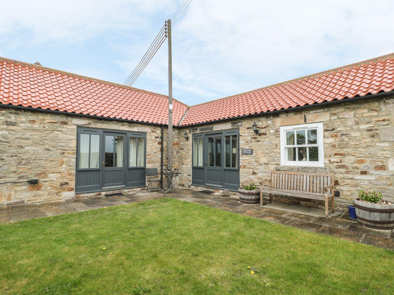 Sheep Pen Cottage - Northumberland - 946713 - photo 1