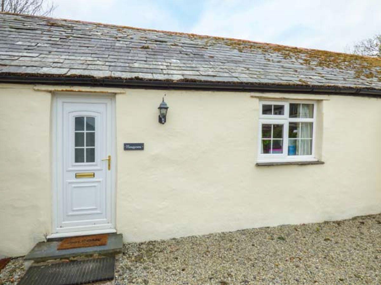Hengroen - Cornwall - 947290 - photo 1