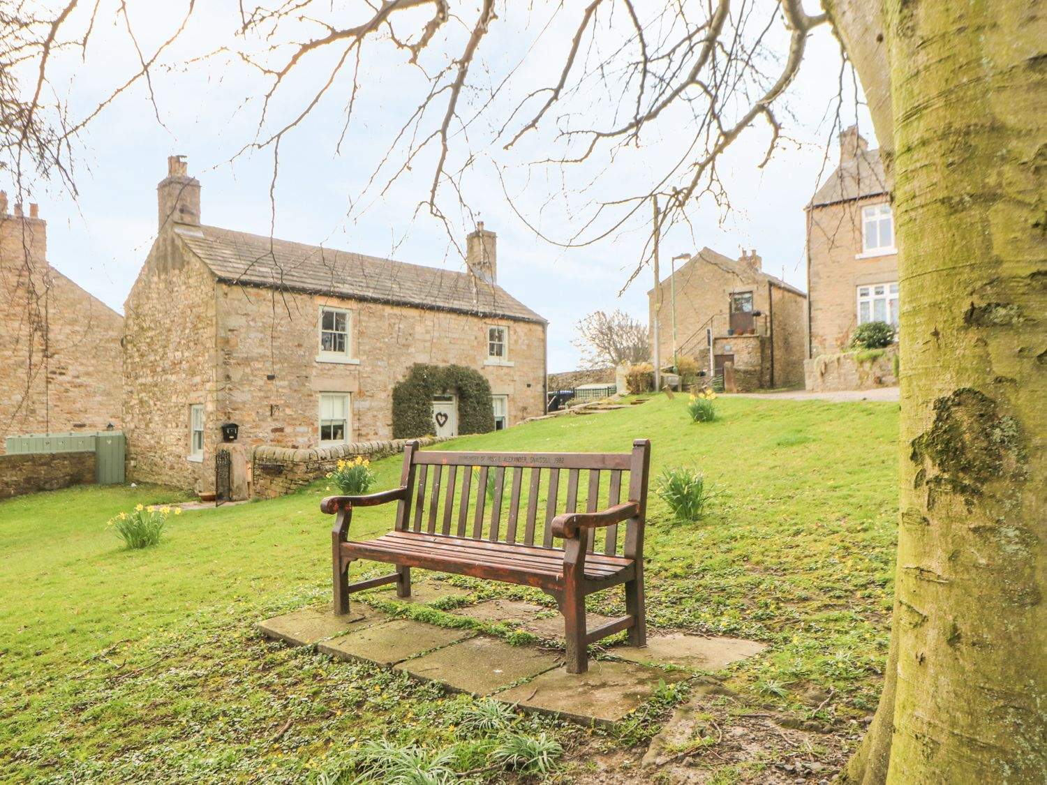 The Hill Cottage - Yorkshire Dales - 949469 - photo 1