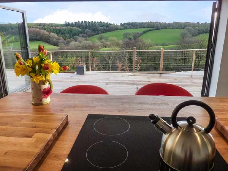 Ramstorland Woodland View - Devon - 952314 - photo 1