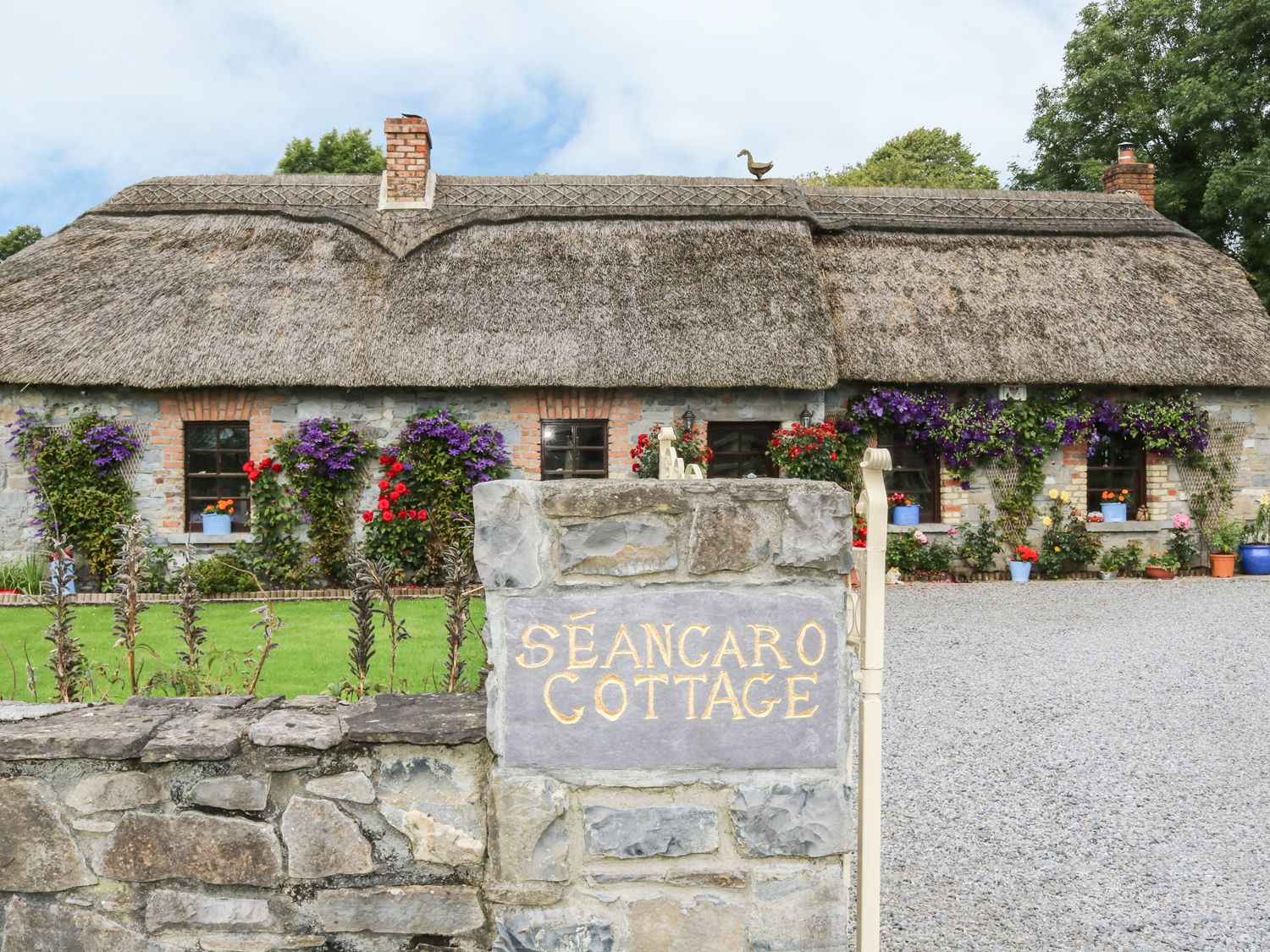 Seancaro Cottage - North Ireland - 954435 - photo 1